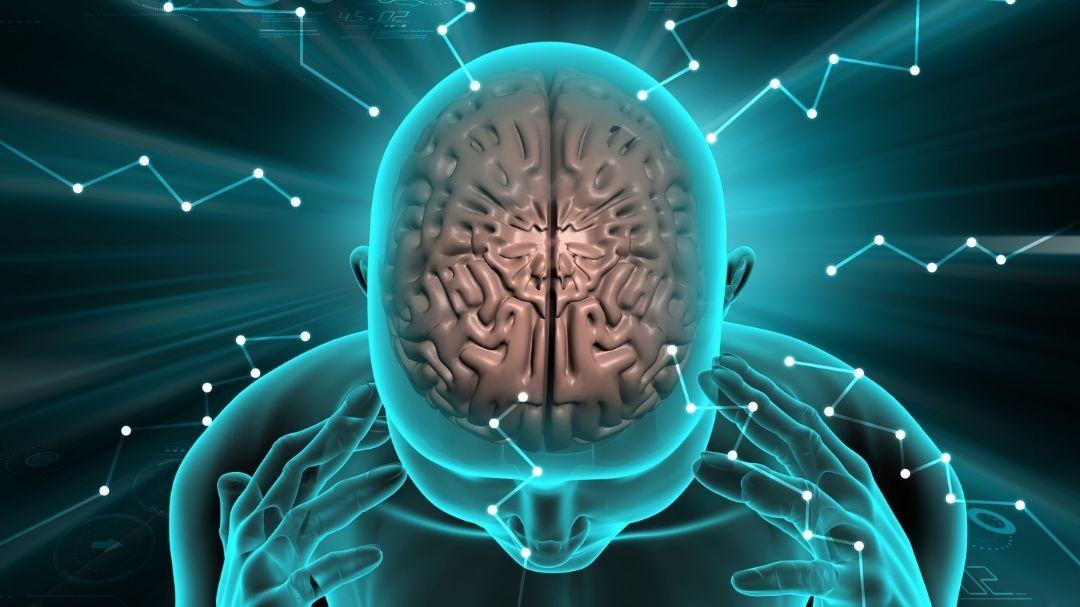 Мнемотехника - методики увеличения памяти в 5 раз
